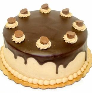 Chocolate Peanut Butter Dessert Cake